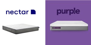 Nectar vs purple